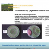 Compost de lodo con alto valor añadido (Trichoderma sp.)