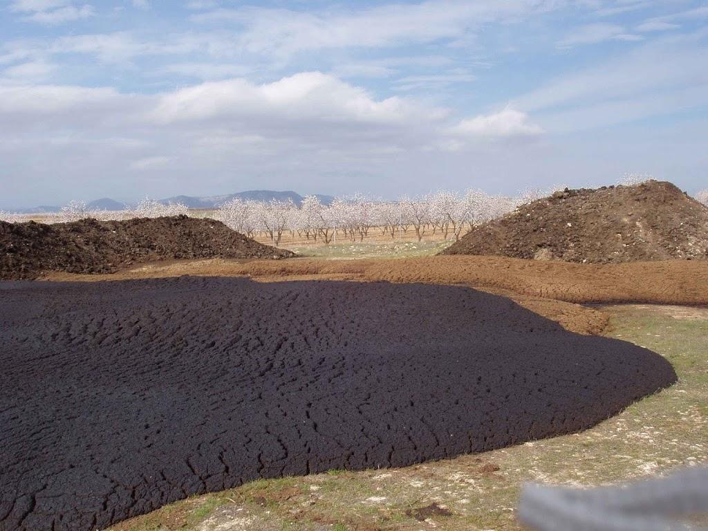Materiales para hacer compost: ¿Qué es el alperujo?