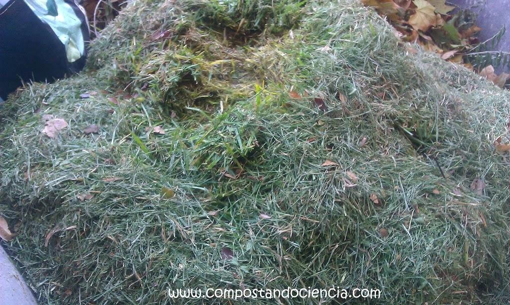Materiales para hacer compost restos de poda de c sped - Tipos de cesped ...
