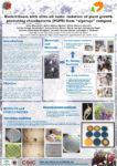 Poster PIIISA biofertilizantes