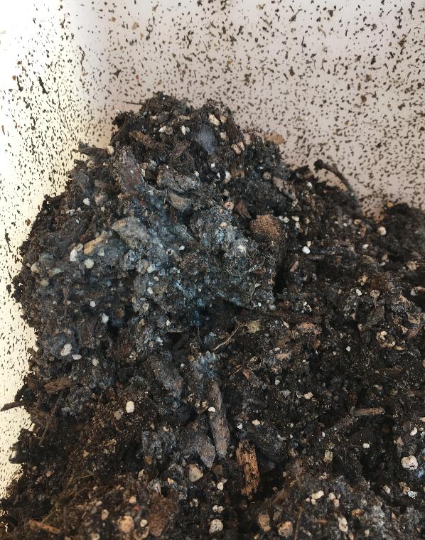 Compostaje de biorresiduos